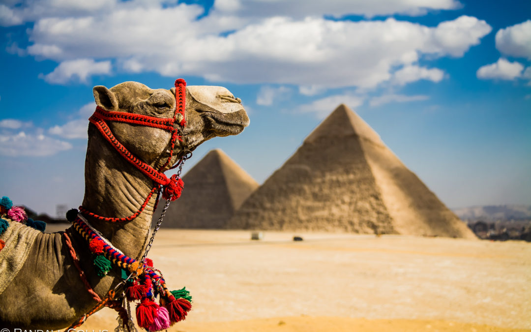 Egypt – The Land of the Pharaohs, April 2019